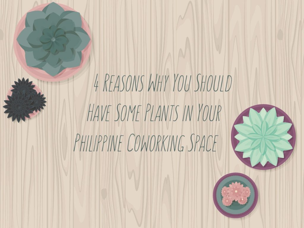 4 Reasons Why You Should Have Some Plants in Your Philippine Coworking Space_COVER